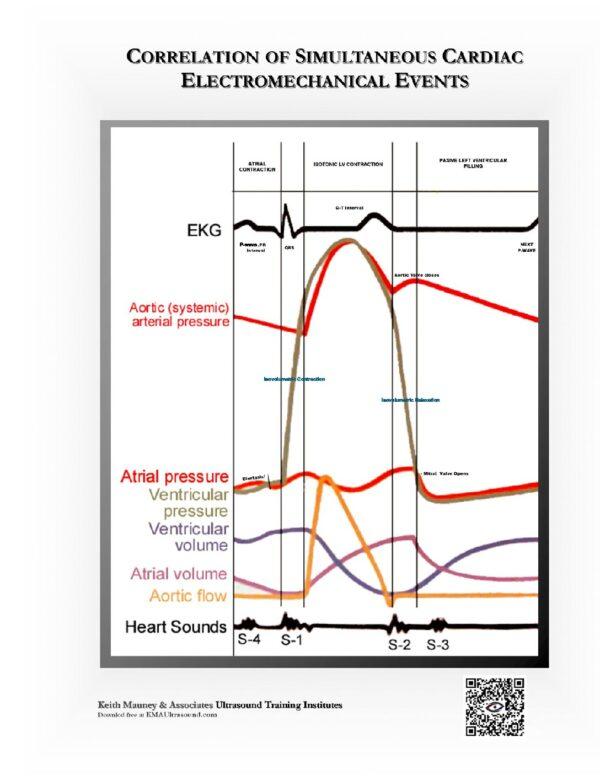 Correlation of Simultaneous Cardiac Electromechanical Events